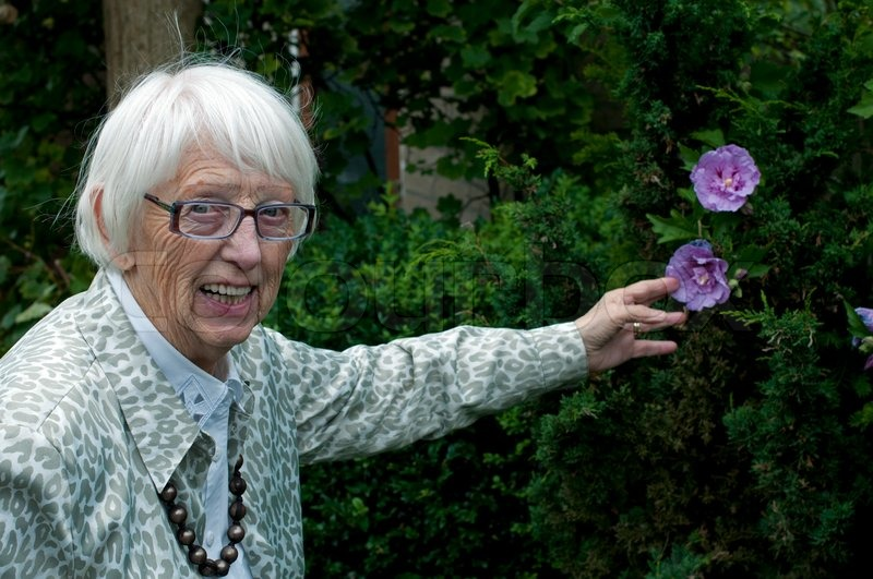 Grandma In The Garden Showing The Hibiscus Rosa Chineses   Stock Photo    Colourbox