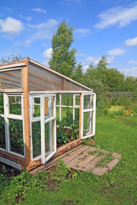 Holz Gewachshaus Im Sommer Garten Stockfoto Colourbox