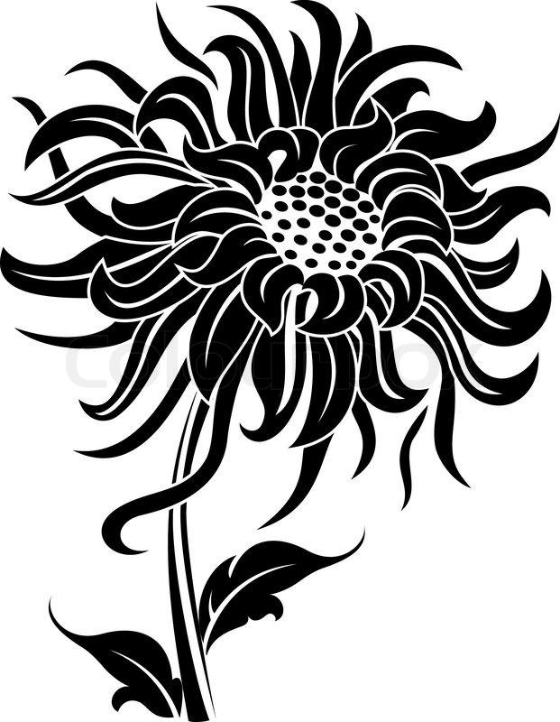 Flower Art Black And White Black Flower Isolated on White