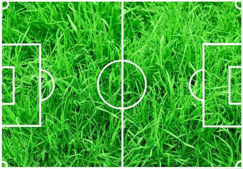 soccer field with white lines on green grass background stock photo colourbox soccer o58 green