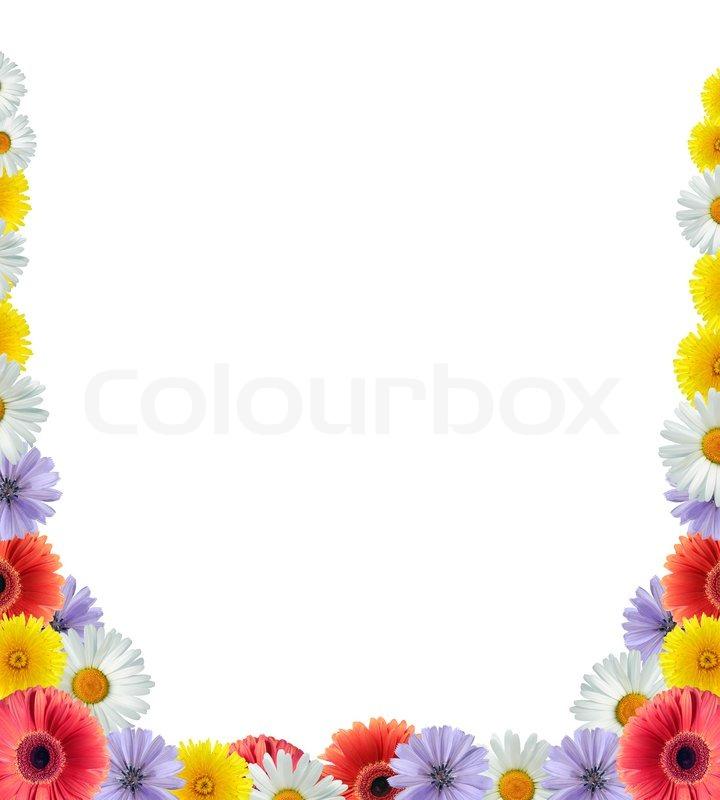Nice flower frame on white | Stock Photo | Colourbox