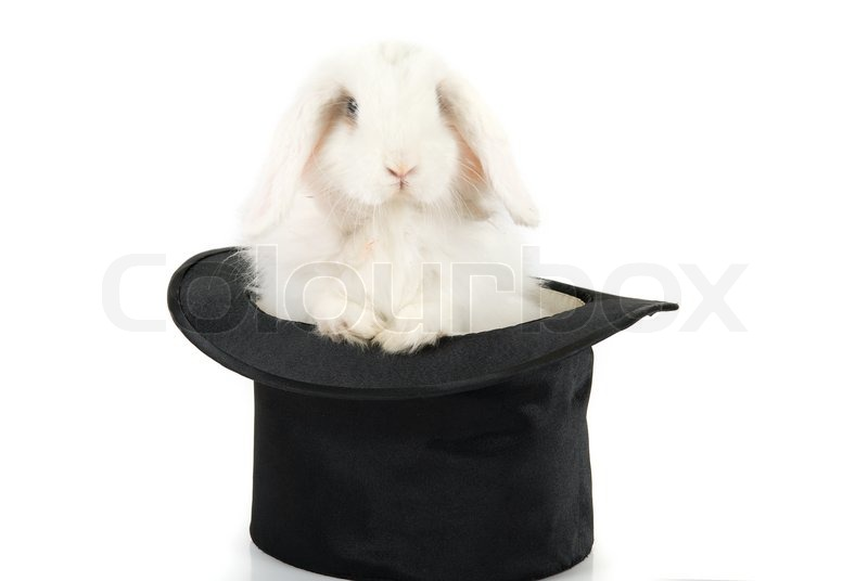 Little Rabbit In A Top Magic Hat Isolated On White Background