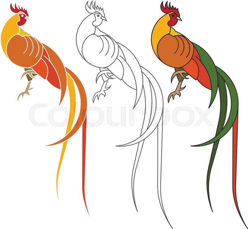 Rooster As Animal Symbol Of Chinese New Year 2017 Stock Vector