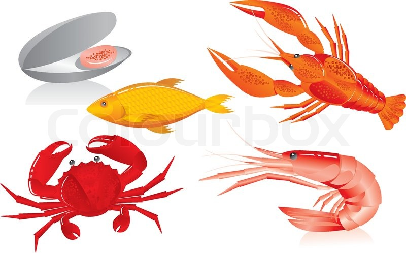 Supplier Shrimp Mail: Seafood: Oyster, Shrimp, Crawfish, Crab And Fish