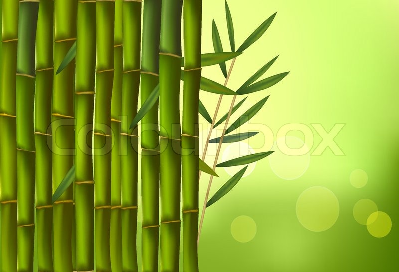 ef481244b617 Beautiful bamboo border. Vector ...