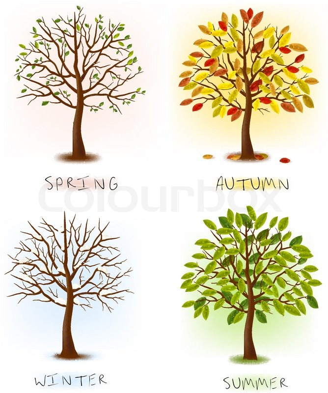 Сезоны (seasons) 2121161-843462-four-seasons-spring-summer-autumn-winter-art-tree-beautiful-for-your-design-vector-illustration