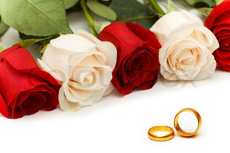 Roses And Wedding Rings Isolated On White