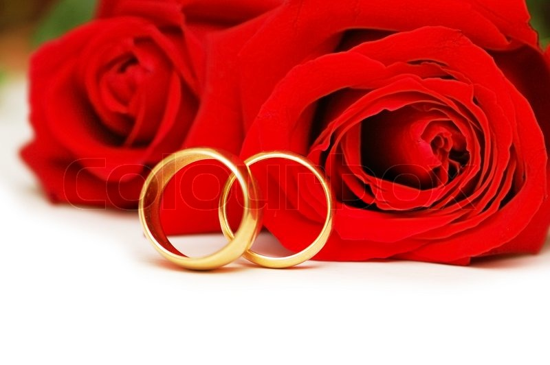 Two wedding rings and red roses isolated on white | Stock Photo ...
