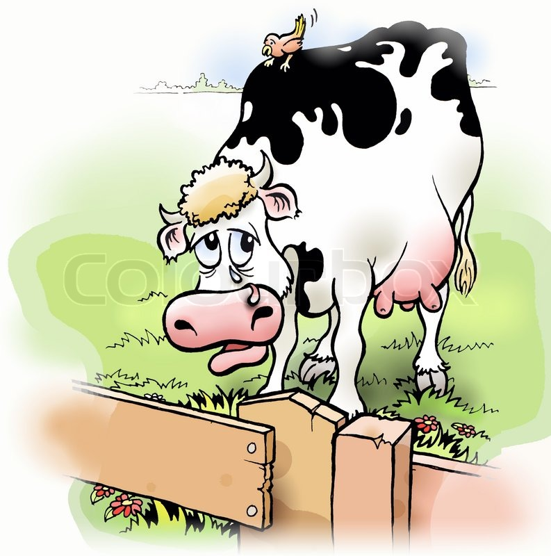 Sad Cow Behind Fence With Bird Illustration Stock