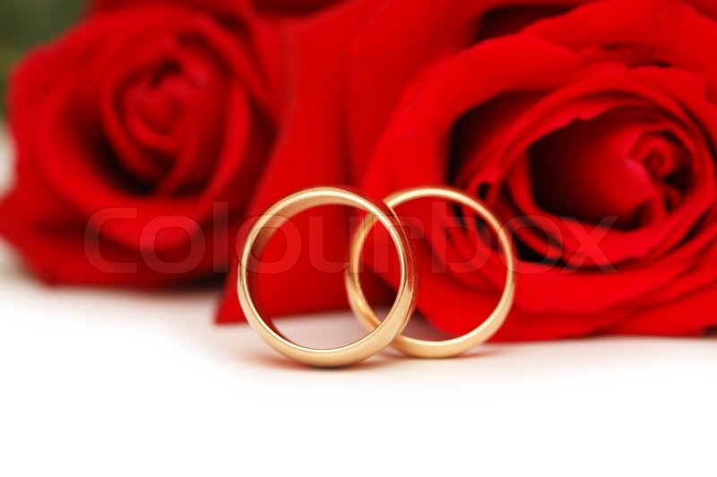 Two wedding rings and red roses isolated on white Stock Photo