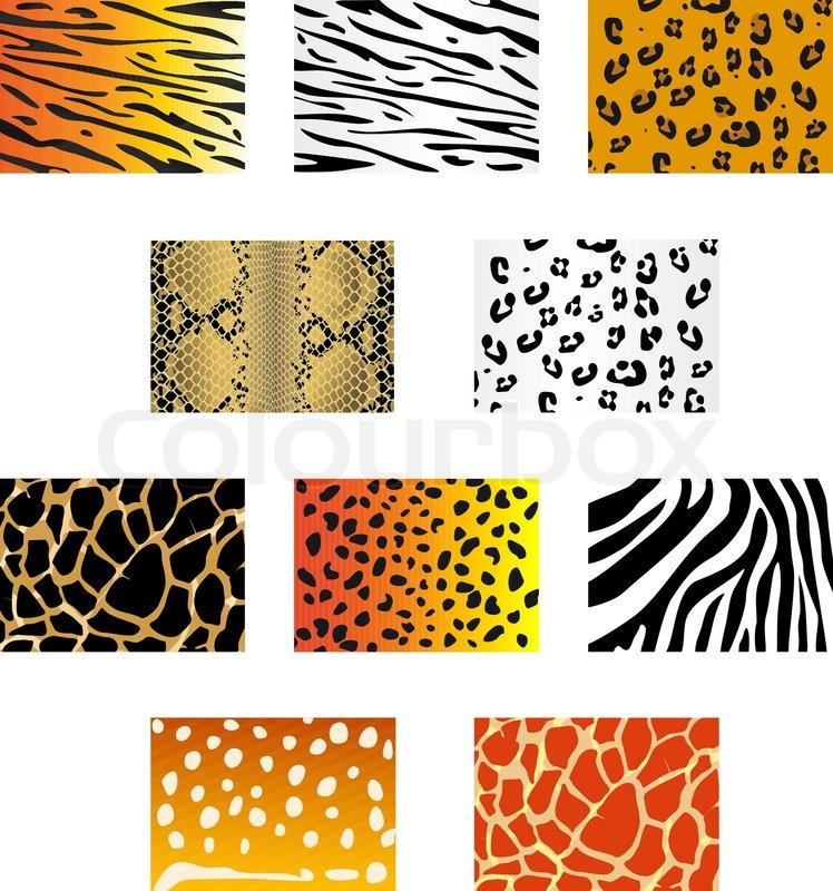 Cheetah Fur Close Up Set of animal fur and ...