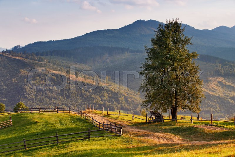 September rural scene in Carpathian mountains. Authentic village and fence , stock photo