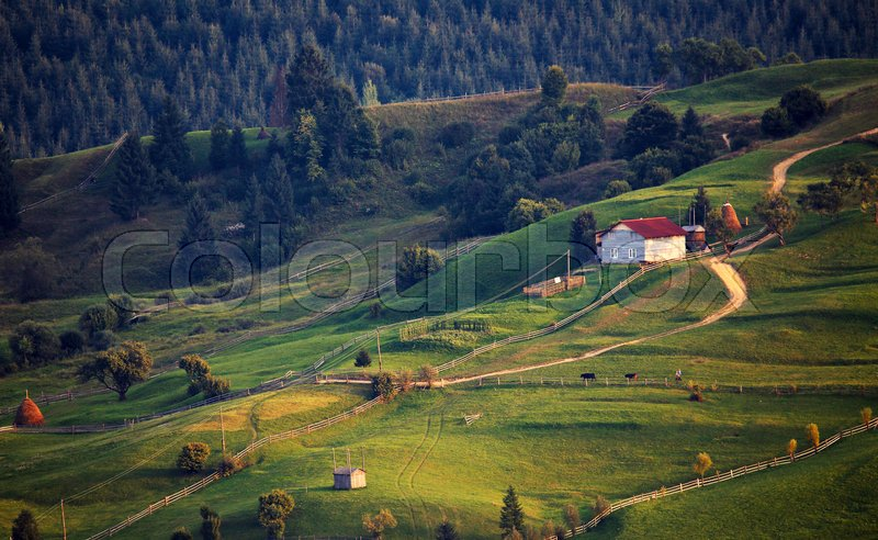 September rural scene in Carpathian mountains. Authentic village and fence, stock photo