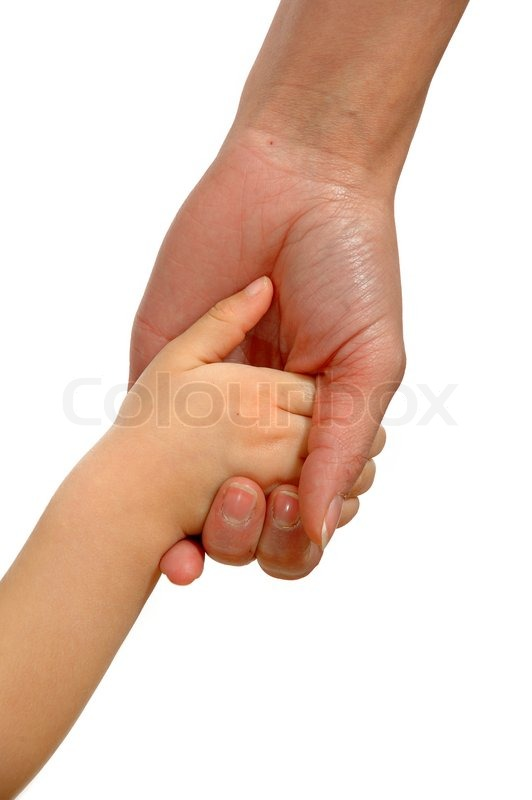 Baby hand holding adult