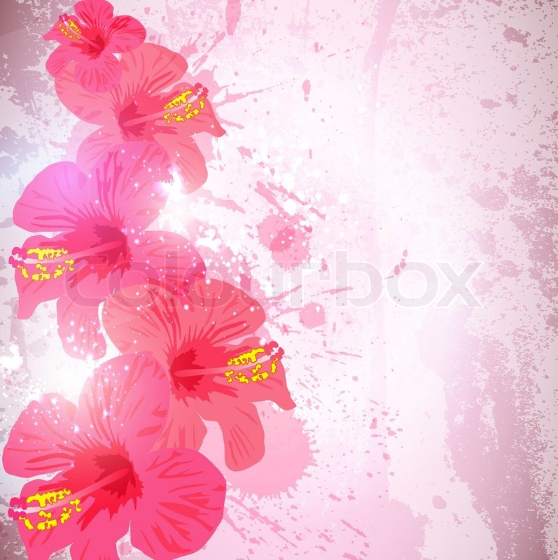 Flower  on Vector Of  Abstract Tropical Background  Hibiscus Flower For Design