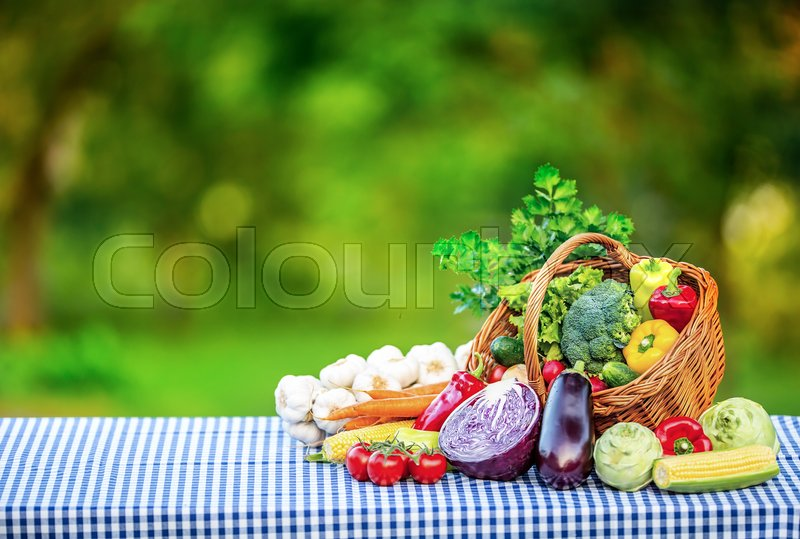 Vegetables. Fresh mix vegetable on table in the background garden. Assortment of fresh vegetables close up, stock photo