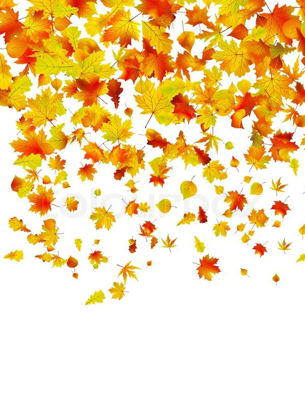 Background of autumn leaves. EPS 8 vector file included ...