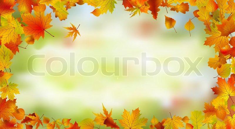 herbst karte von hellen mehrfarbigen bl ttern vektorgrafik colourbox. Black Bedroom Furniture Sets. Home Design Ideas