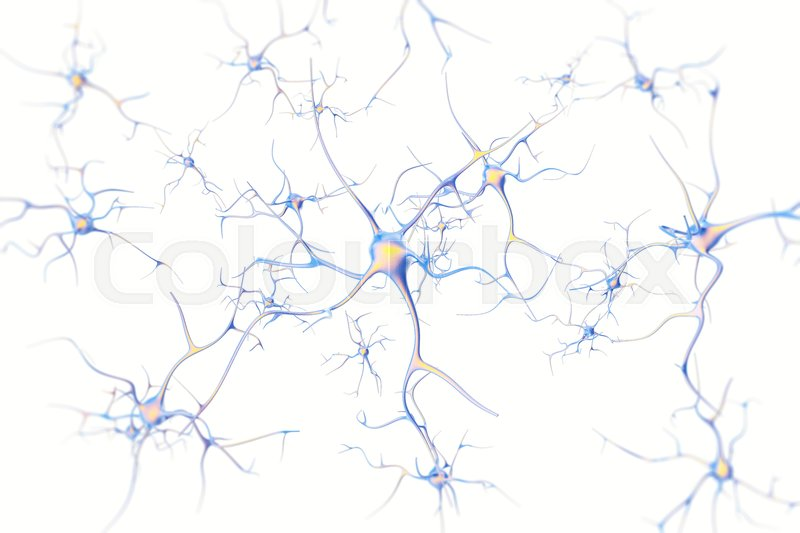 Neurons in the brain on white background with focus effect ...