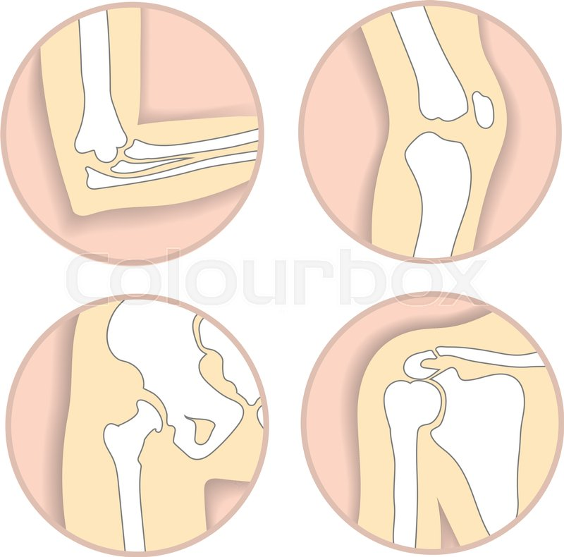 Set of human joints, elbow, knee joint, hip and shoulder joint ...