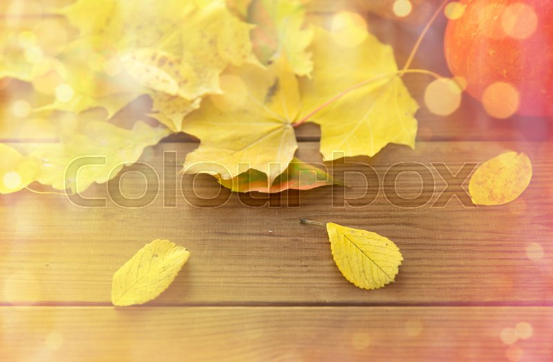 Stock image of 'harvest, season, advertisement and autumn concept - close up of pumpkins and leaves on wooden table at home'