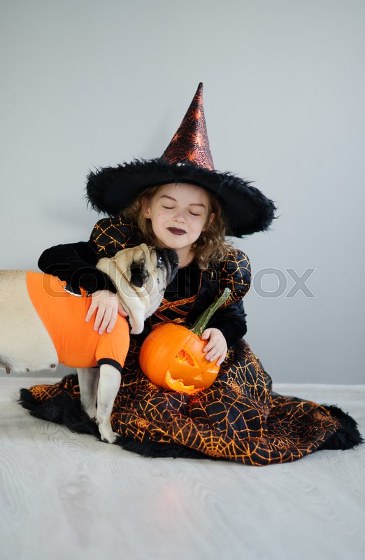 Stock image of 'Little girl and her friend - pug are dressed in suits for Halloween. Girl in an image of evil fairy sits on a floor. On a doggie have put on an orange sweater. Girl holds pumpkin and embraces pug.'