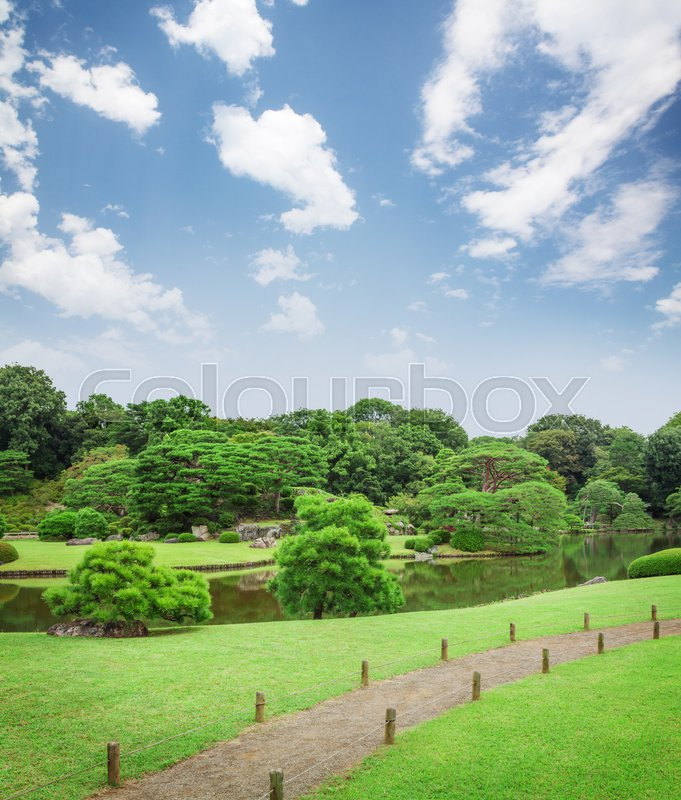 Stock image of 'Japan garden with fir trees and pond'