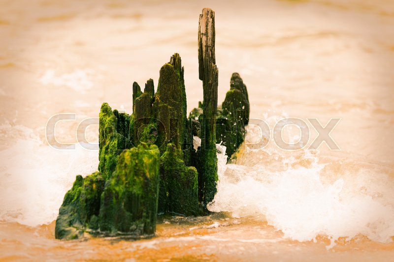 Stock image of 'Old jetty in the ocean wave splash.'