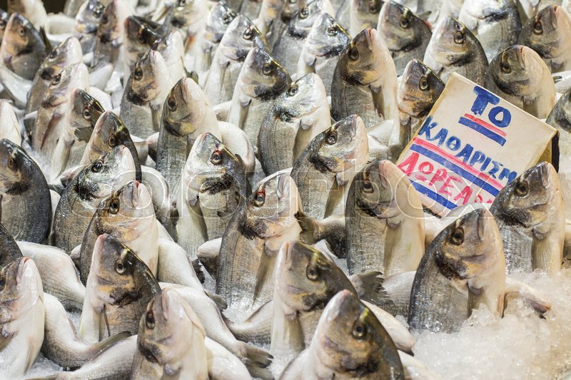 Stock image of 'Variety of fish and seafood on local greece market.\\ '