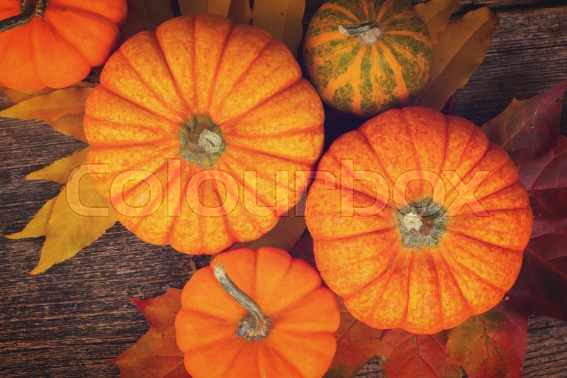 Stock image of 'orange and green pumpkins with fall leaves on wooden textured table, retro toned'