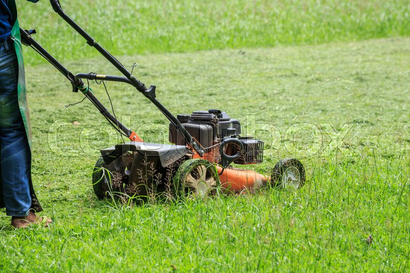 Stock image of 'A worker mowing grass in the garden'