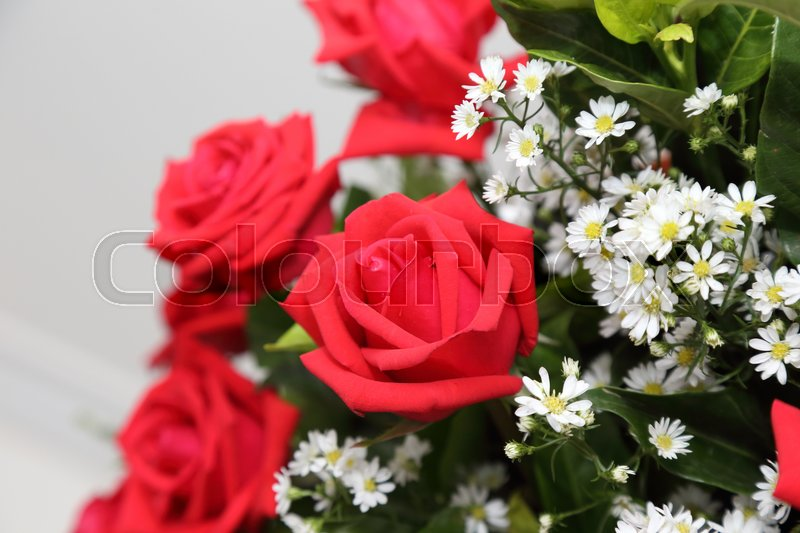 Stock image of 'background of red rose  bouquet'