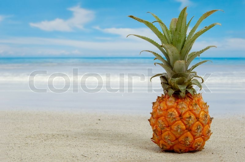 Pineapple on an exotic beach with blue and cloudy sky, stock photo