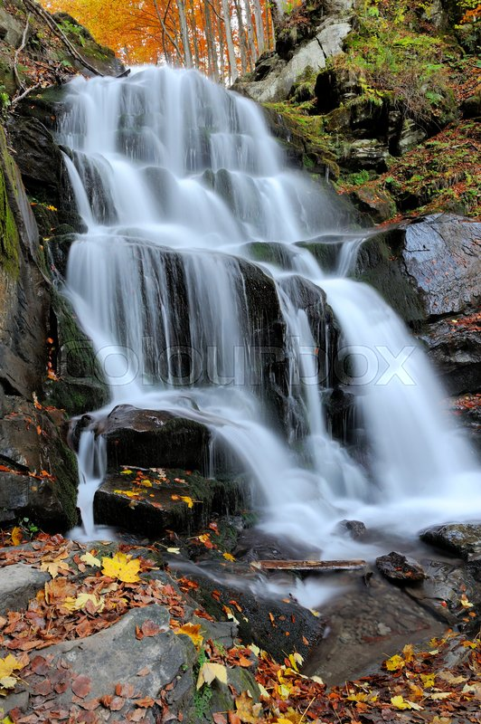 Stock image of 'Autumn forest waterfall and rocks with yellow leaves'