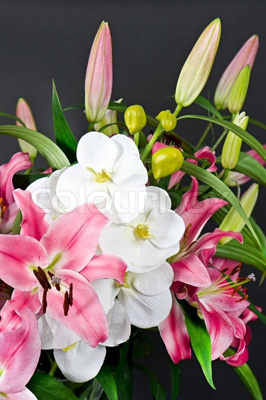 Pink lily and orchid flowers bouquet on black | Stock Photo | Colourbox