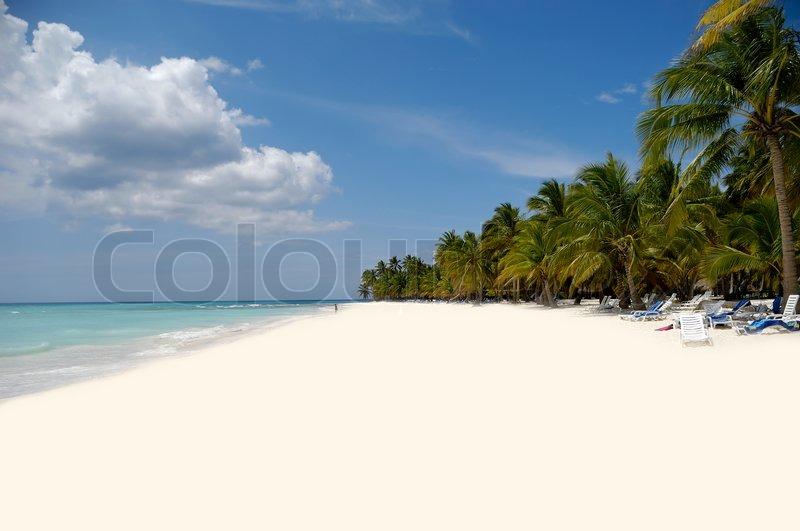 Moderne Eksotisk strand med hvidt sand og palmer | Stock foto | Colourbox TD65