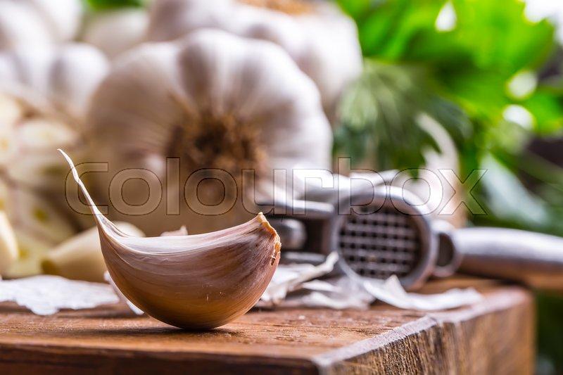 Garlic. Bunch of fresh garlic with celery herbs, stock photo