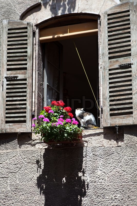 Admirable Cat In The Window Old Style House Stock Image Colourbox Home Interior And Landscaping Synyenasavecom
