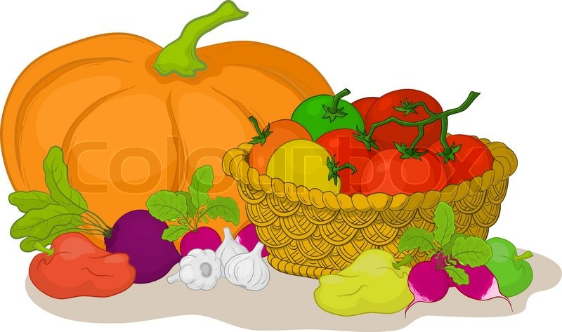 vector still life various vegetables and wattled basket