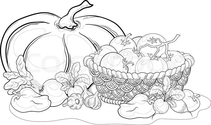 Vector Still Life Various Vegetables Stock Vector Colourbox
