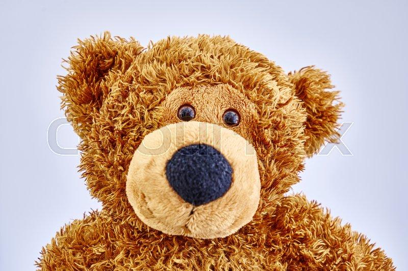 A studio photo of a toy bear, stock photo
