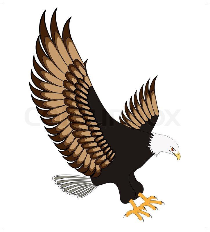 Abbildung fliegenden Adler auf weißem Hintergrund isoliert ...