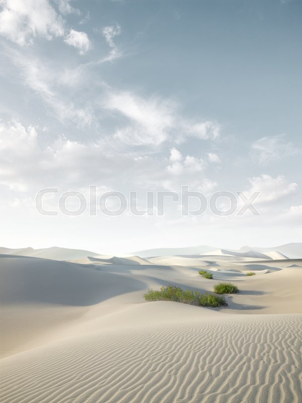 Stock image of 'view of nice sands dunes at Sands Dunes National Park'
