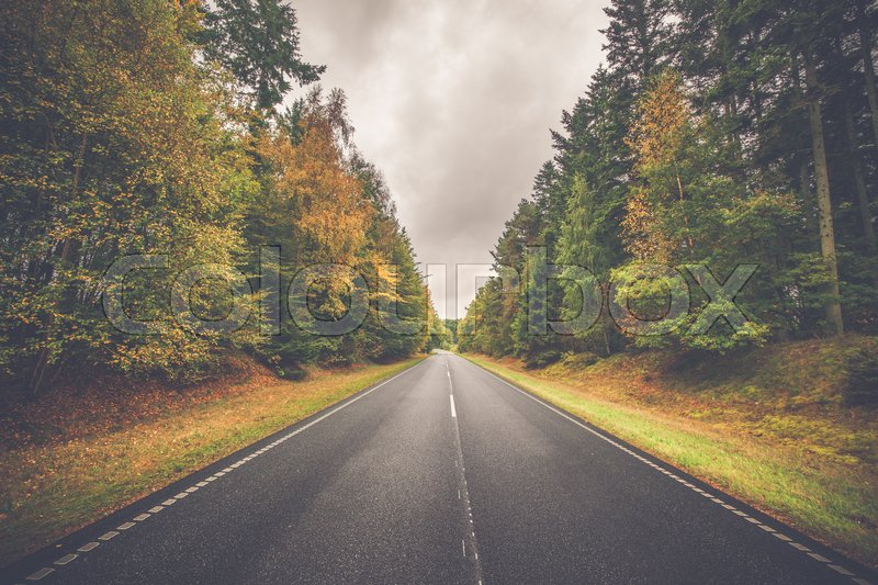 Stock image of 'Highway with colorful trees by the road in autumn'