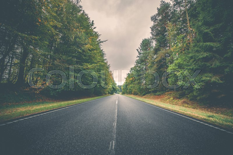 Stock image of 'Asphalt road surrounded by colorful trees in autumn'