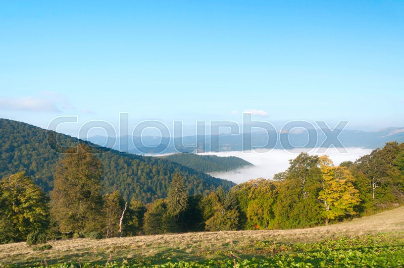 Stock image of 'Autumn nature landscape with mountains, trees and fog. Carpathian Mountains.'