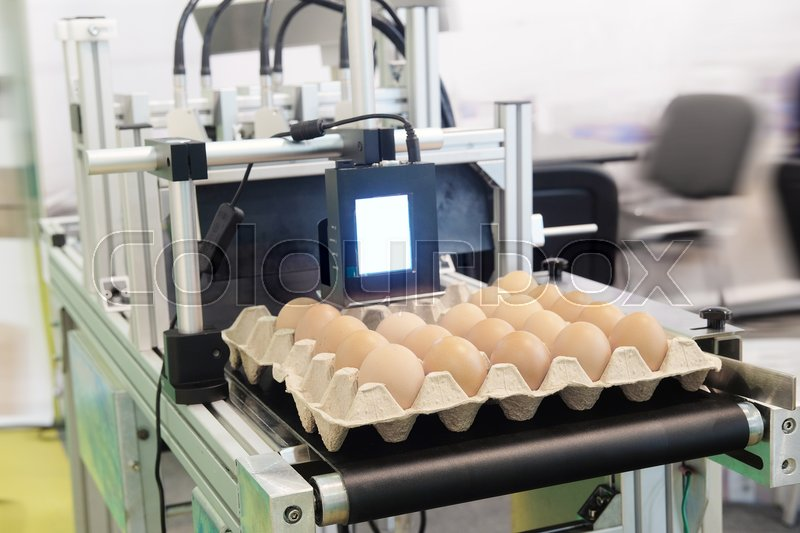 Stock image of 'Industrial eggs packaging line'