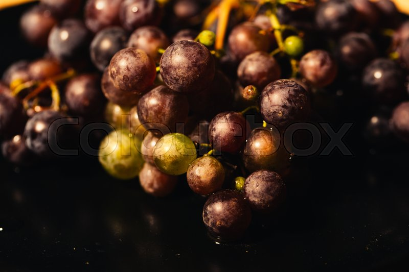 Stock image of 'Berries ripe red grapes on a branch close-up.'