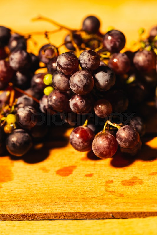 Stock image of 'Berries ripe red grapes on a branch close-up on a blurred background.'