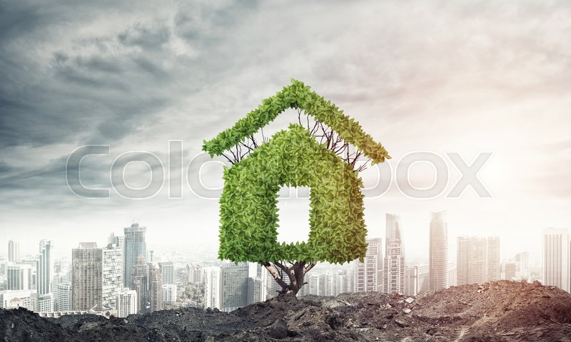 Stock image of 'House shaped green tree as real estate concept'